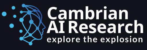 Cambrian AI Research